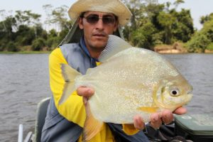 Amazone, tightlines (10)