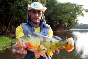 Amazone, tightlines (27)