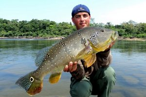 Amazone, tightlines (50)