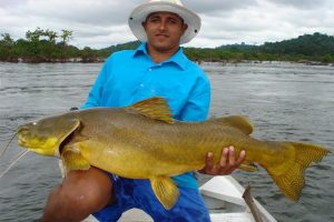 Amazone, tightlines (51)