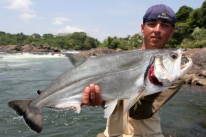 Amazone, tightlines (64)