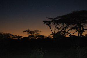 Kenia-(25)