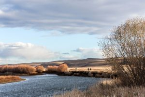 Oost Mongolie, Tight lines (24)
