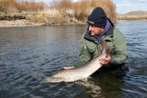 Oost Mongolie, Tight lines (27)