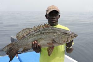 Senegal (20)