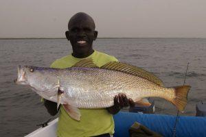 Senegal (4)