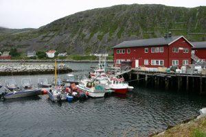 NoorwegenKjollejord38