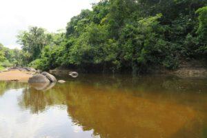 Suriname (30)